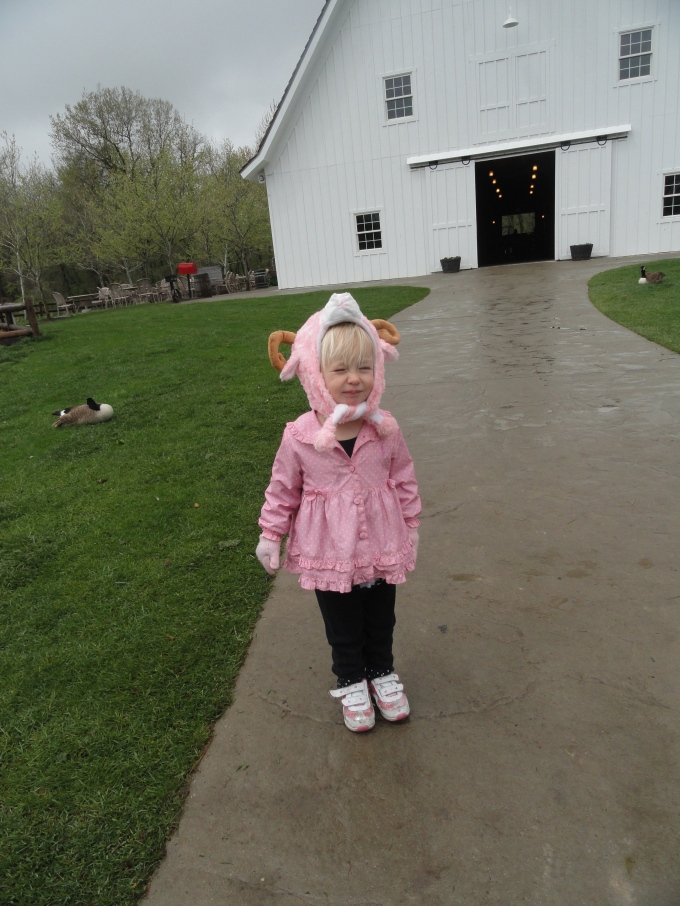 Little Hannah Cottontail :-)