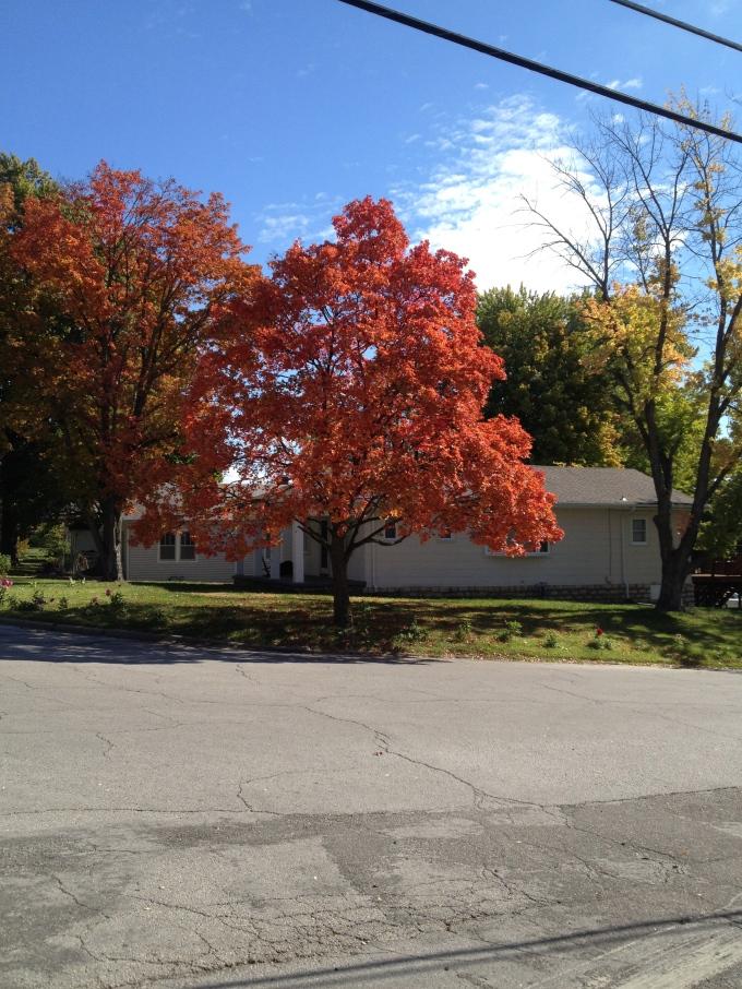 Experiencing Autumn in Kansas